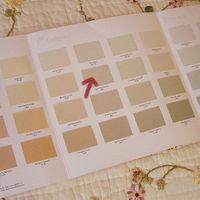 PaintColor