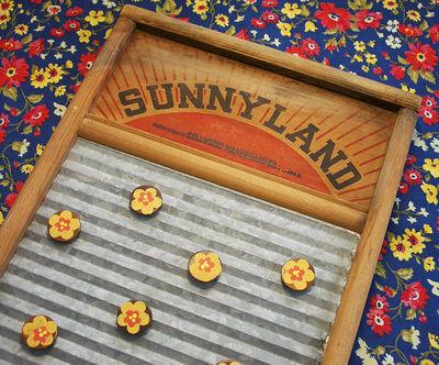 SunnylandDetail
