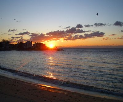 Sunrise&Seagulls