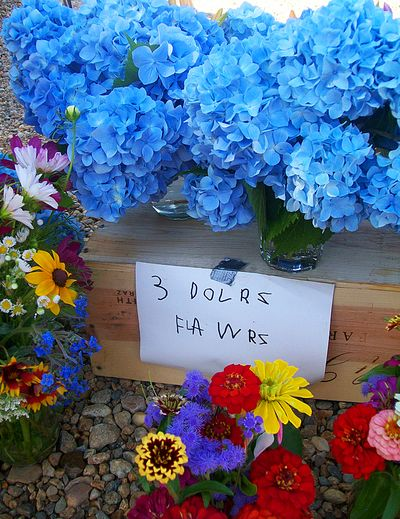 3$Flowers