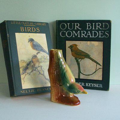 BirdLot1