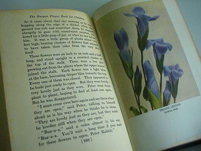 BurgessFlowerBook2