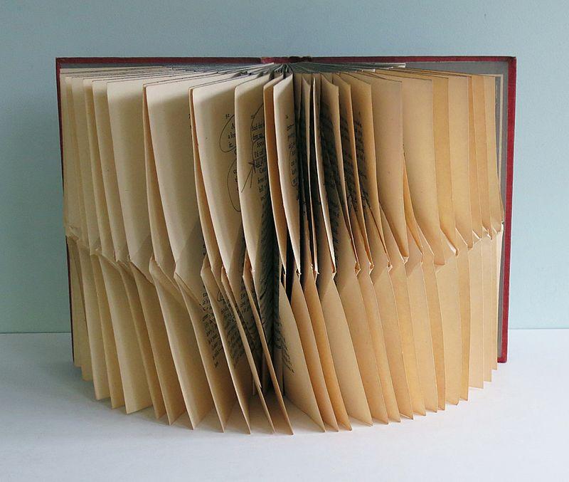 FoldedBook13