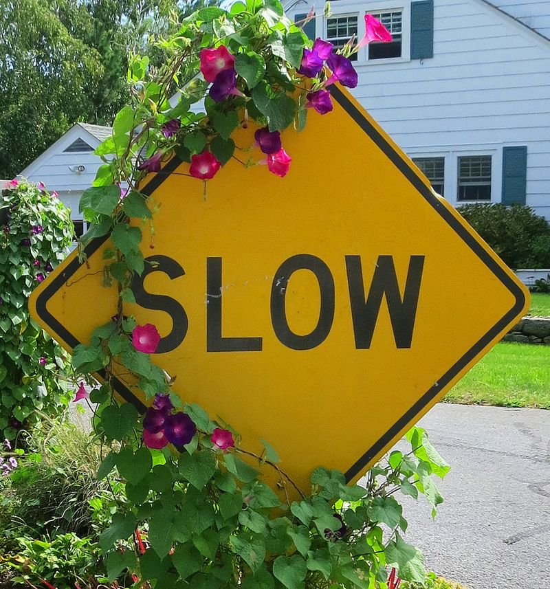 SlowSign
