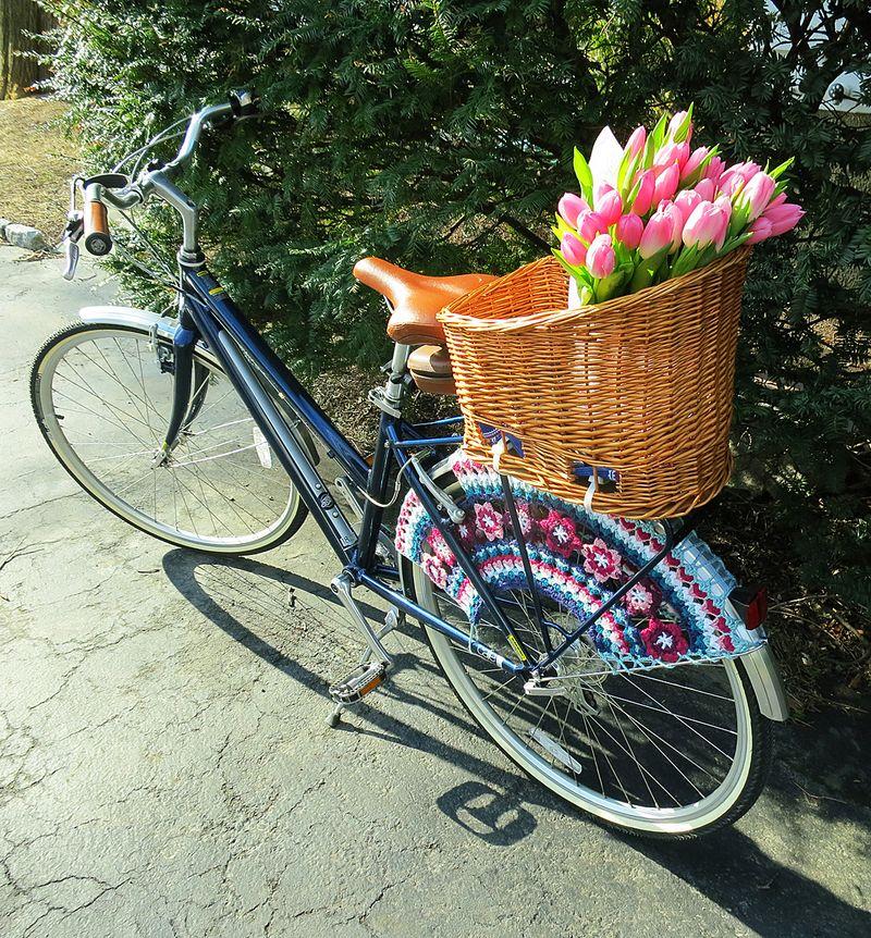My Bike's Skirt Guard 1