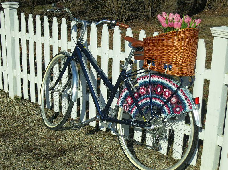 My Bike's Skirt Guard 3