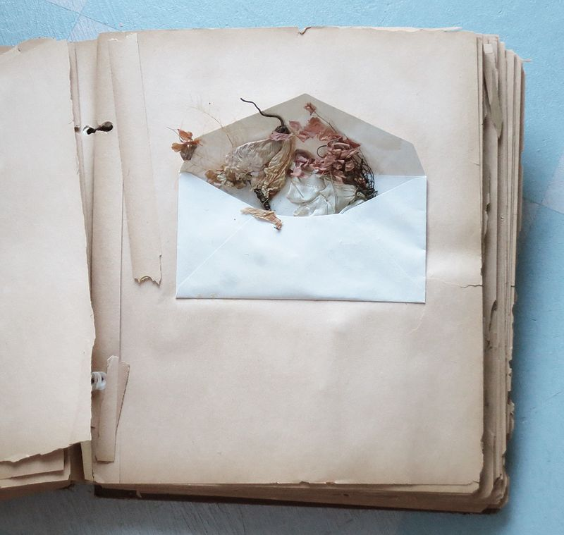 Scrapbook6