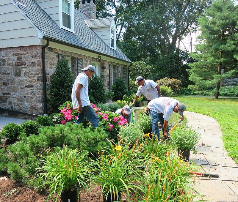 Cottage Garden Progress