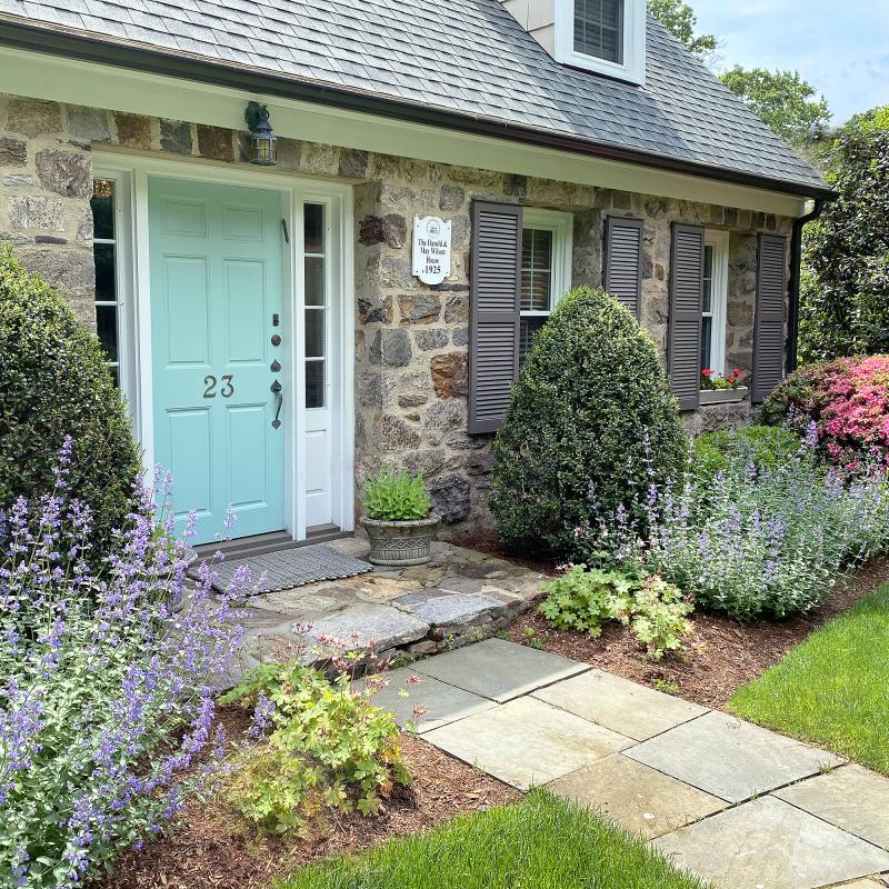 June 2020 front garden