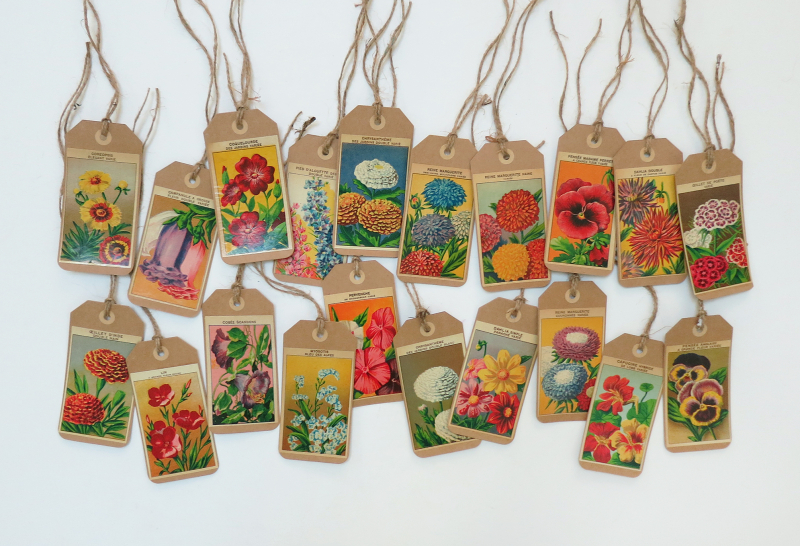 More kraft seed labels tags 1 copy