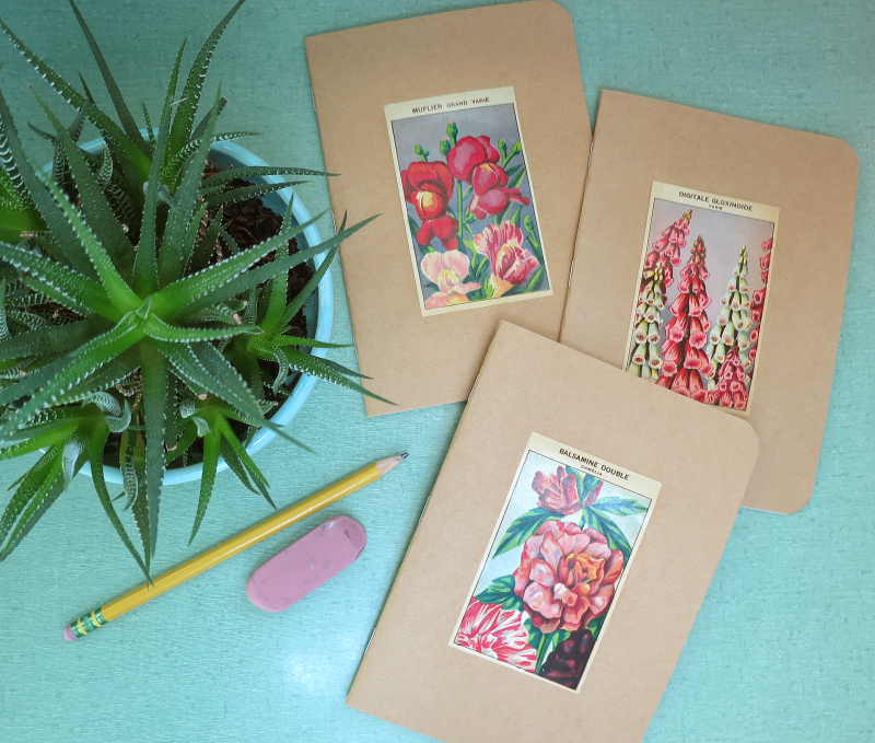 5x7 seed label notebooks 6 copy