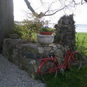 Redbike_3