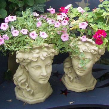 Flowerbusts