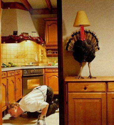 Turkeylamp